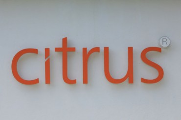 Sri Lanka's Citrus Leisure proposes to restructure group