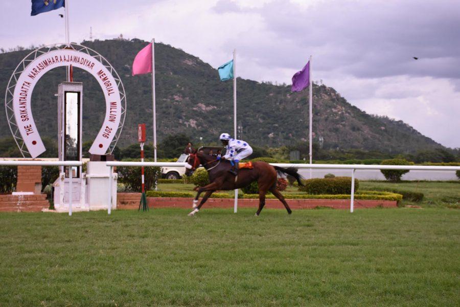 Sri Lankan horse owners make their mark in Mysore