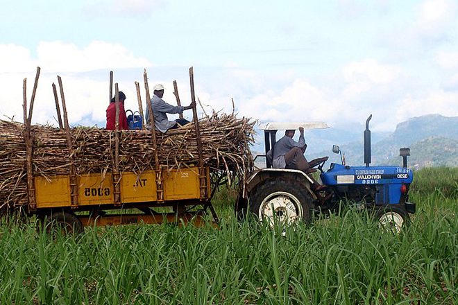 Lanka Sugar posts Rs.1 bn profit