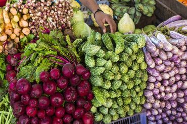 Sri Lanka to promote organic food production and open an export market for the products