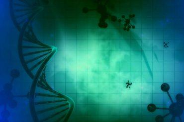 Sri Lanka to draft Bio Safety Bill to counter gene technology