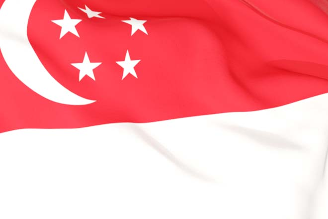 Singapore FTA: What it means for Trade and Investment Flows