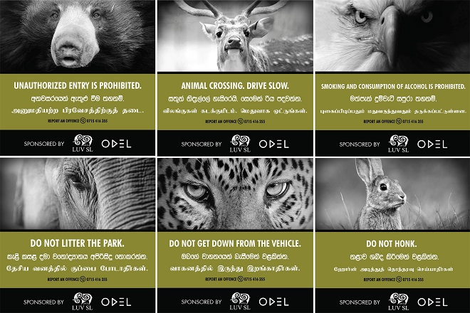 Odel launches campaign to protect Yala wildlife