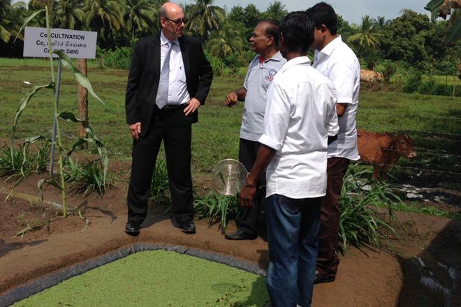 Polonnaruwa dairy farmers