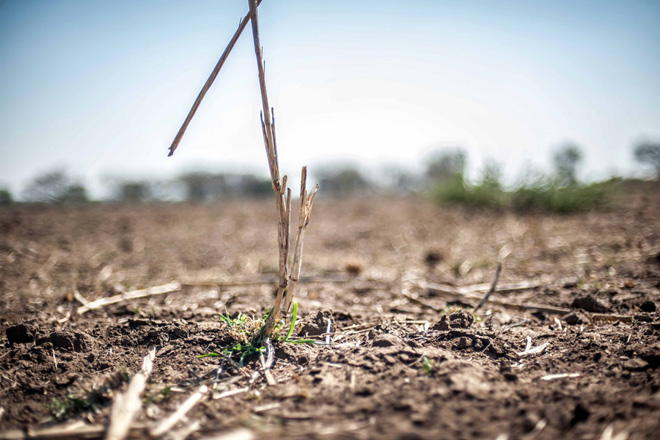 Over one million Sri Lankans affected by drought