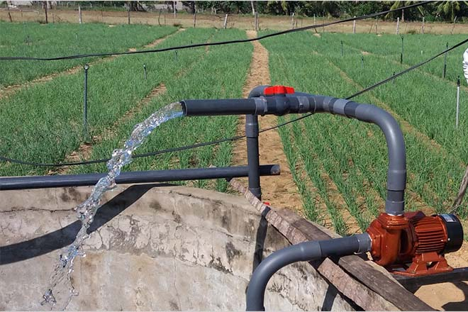 Jinasena launches solar irrigation with increased efficiency