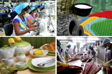 Export Advisory Committees appointed covering 24 sectors for 5 years