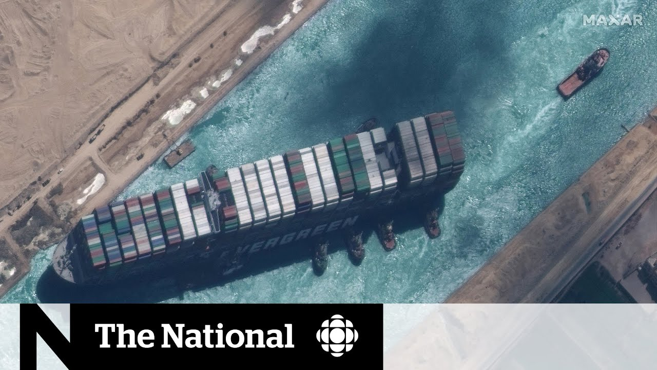 VIDEO: Cargo ship freed from Suez Canal, but shipping backlog could last