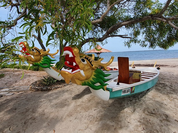 Dragonboats come to Jaffna
