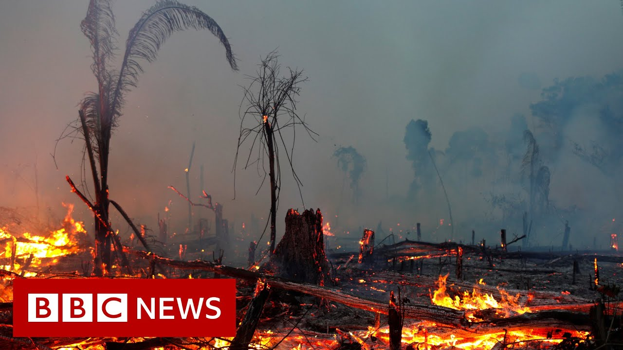 VIDEO: Climate change IPCC report is 'code red for humanity', UN scientists say